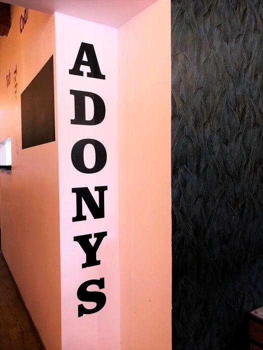 Projet Adonys Lyon, Pauline Rudolf, architecte d'intérieur Lyon France